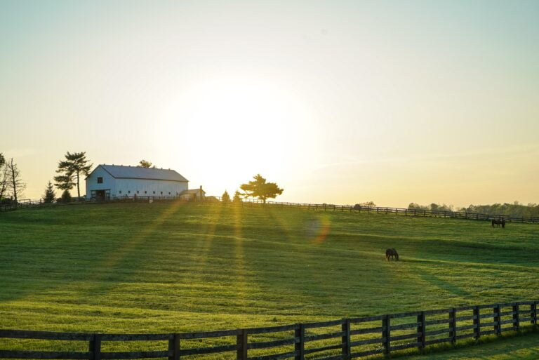 horse farm, organic lawncare, greener earth